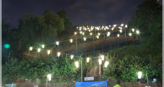 서울 하늘공원 억새축제 야간개장 기간 by 엔죠